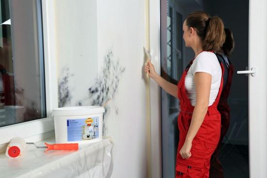 Schimmel im Zimmer sollte schnellstmöglich entfernt werden, am besten chemiefrei.