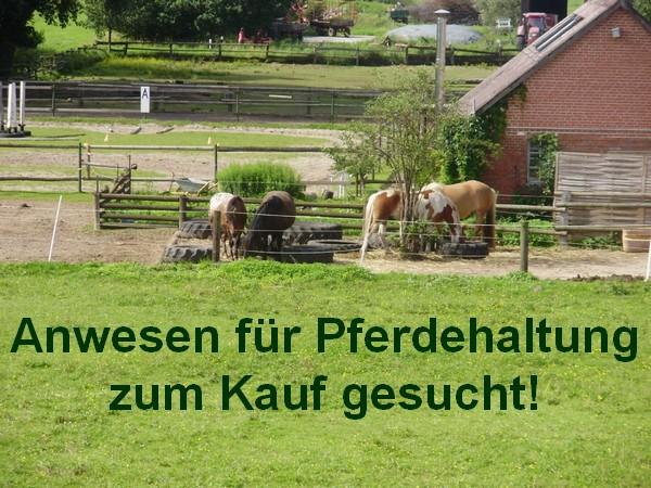 Gesuch +++ Anwesen für Pferdehaltung süd-westlich von Berlin zum Kauf