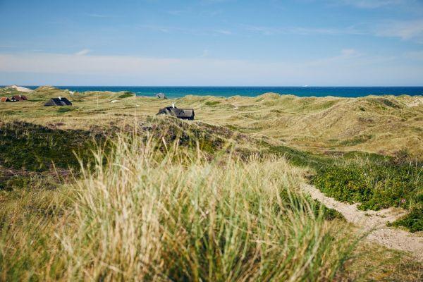 Dänemark Ferienhaus Urlaub